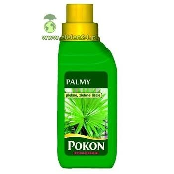 Nawóz do palm Pokon 250 ml