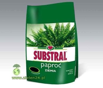 Ziemia do Paproci Substral 3L
