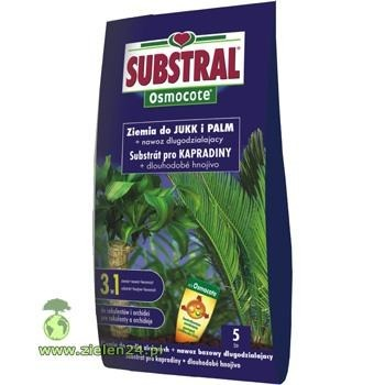 Ziemia do jukk i palm Substral 5L